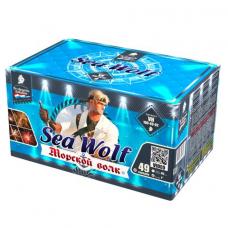 """49 зарядов """"Морской волк"""" 1"""""""